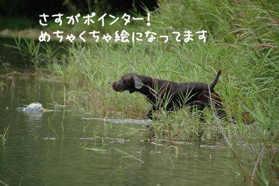 nagano_02.jpg