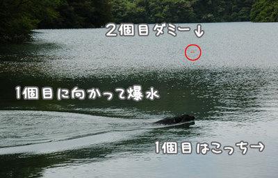 nagano_05.jpg