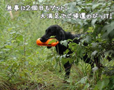 nagano_06.jpg