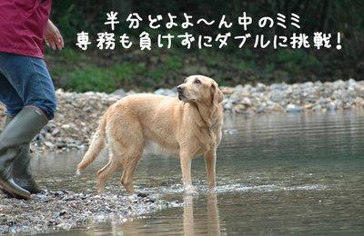 nagano_08.jpg
