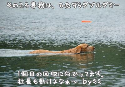 nagano_10.jpg