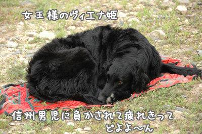 nagano_11.jpg