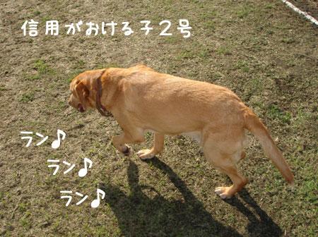 20060916-2.jpg