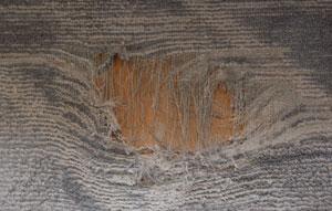 20061015-1.jpg