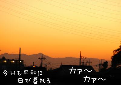 20061109.jpg