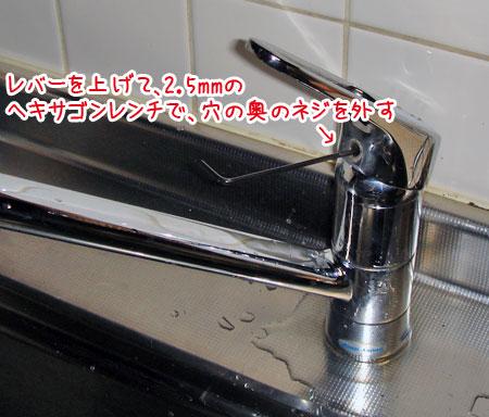 20070106-2.jpg