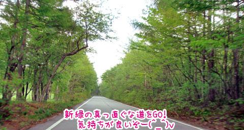 20070604-03.jpg