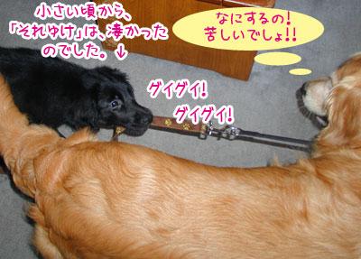 20070609.jpg