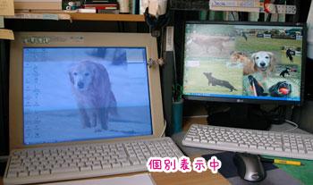 20070803-2.jpg