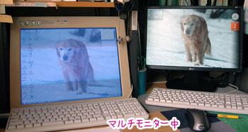 20070803-3.jpg