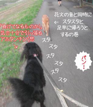 20090706-02.jpg