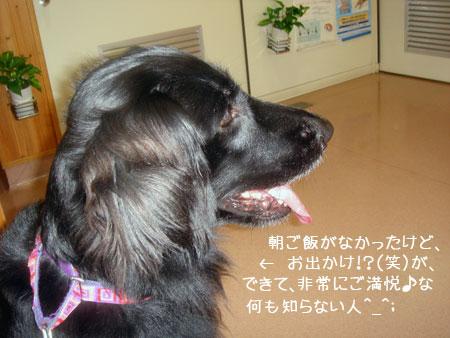 20091127-01.jpg