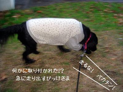 20091214-02.jpg