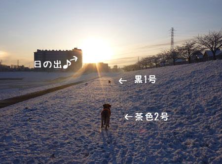 20100204-02.jpg
