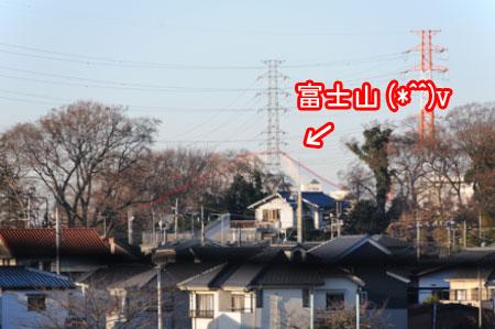 20110127-01.jpg