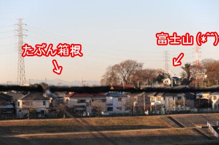 20110127-02.jpg