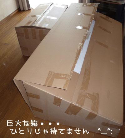 20110716.jpg