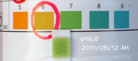 20110812-02.jpg