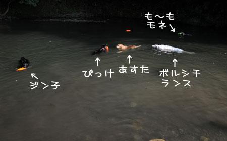 20130818-03.jpg