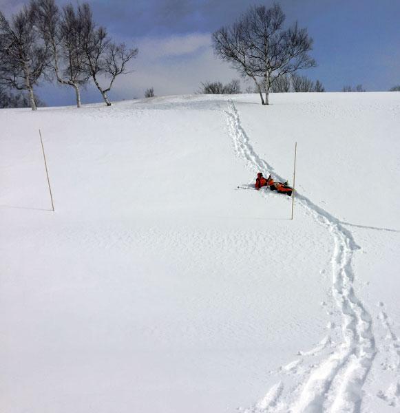 犬連れ雪遊び 菅平 スノーシューハイク sgt05.jpg