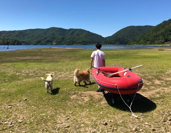 桧原湖,水遊び,泳ぐ,ゴールデンレトリーバー,ラブラドールレトリーバー,フラットコーテッドレトリーバー,ボート遊び,大型犬